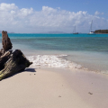 Schwimmen mit Schildkröten, St. Vincent and the Grenadines, SVG